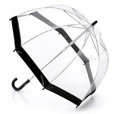 Umbrella - Fulton Birdcage (black)